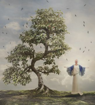 A composite photo made with photoshop of a magical healer under a bonsai tree