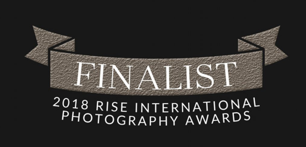 Alana Lee Photography: Rise 2018 Finalist award
