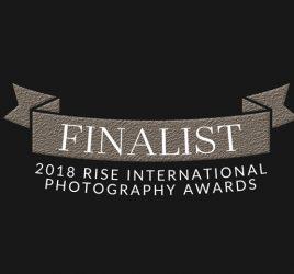 Rise 2018 Finalist award