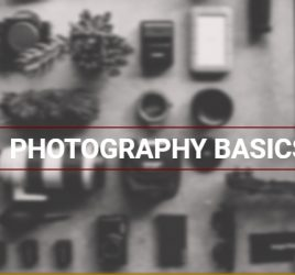 photography basics and how to use your camera from the Alana Lee Photography blog