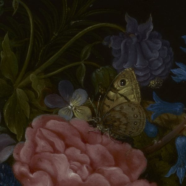 detail of digital floral backdrop showing moth and flowers