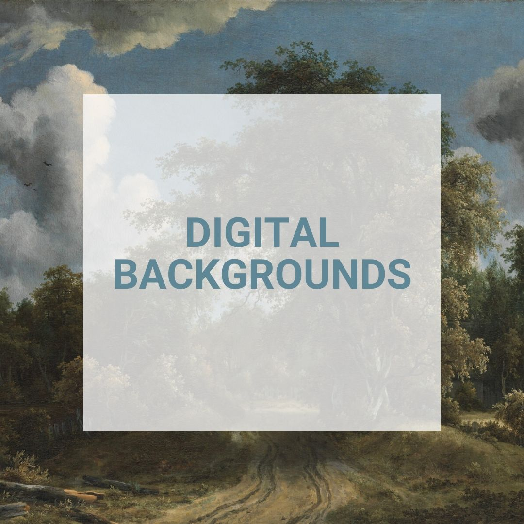 shop for digital backgrounds at the Alana Lee Photography store